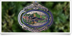 AOPA holiday ornament